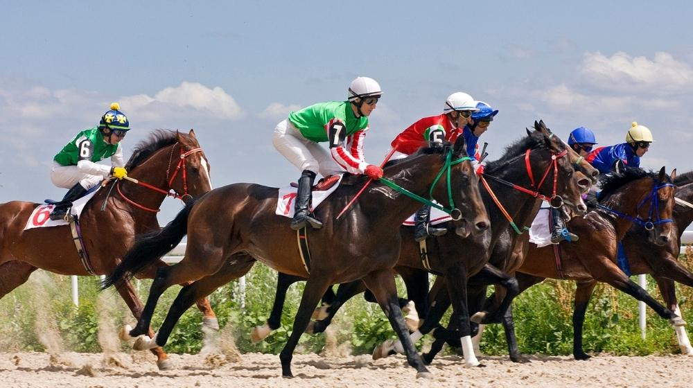 Horse Racing: Bangalore Turf Club season begins but without spectators