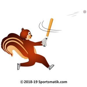 Gillu practicing Baseball