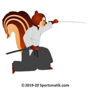 Gillu practicing Aikido