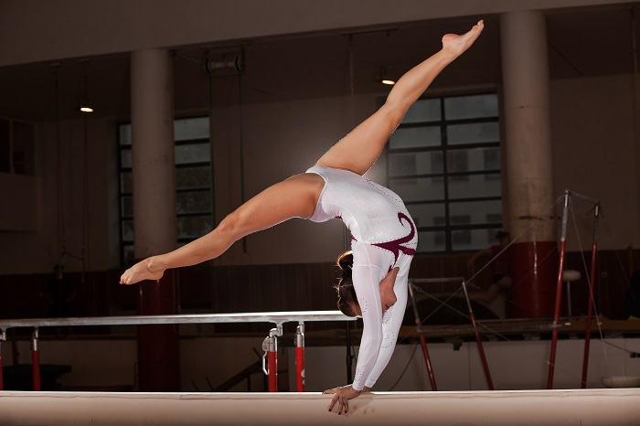 International Gymnastics Hall Of Fame Ceremony