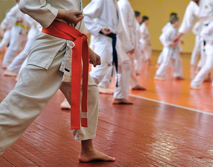 Karate sports