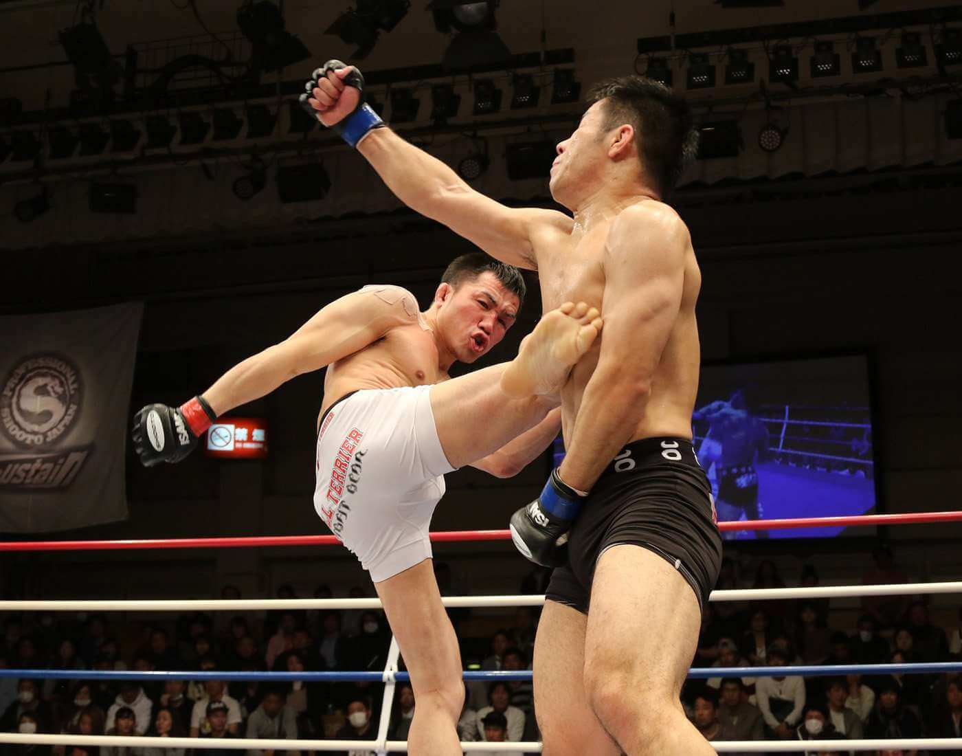 Kickboxing combat sports