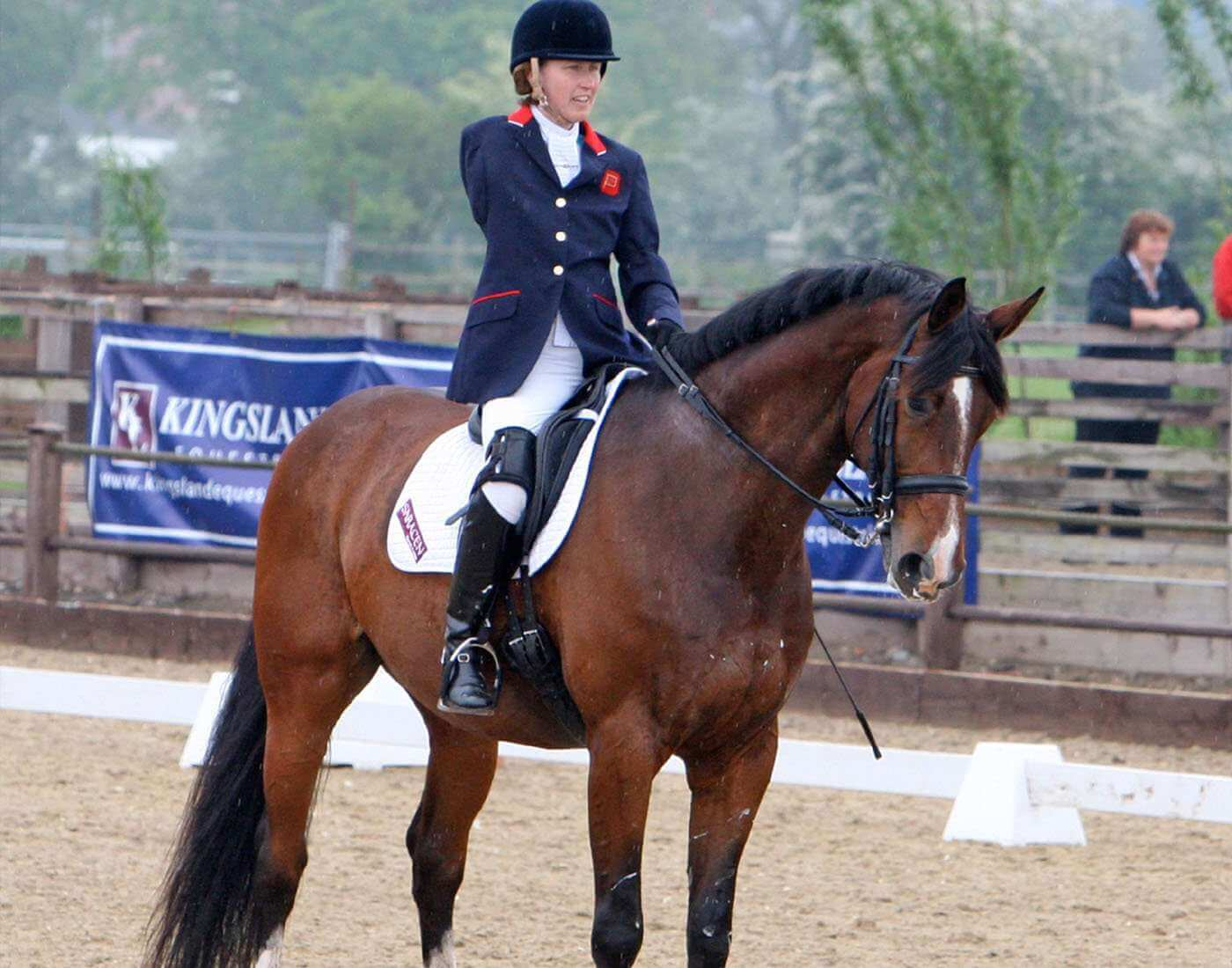 https://sportsmatik.com/uploads/matik-sports-corner/matik-know-how/para-dressage_1493816460_66205.jpg