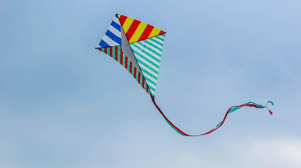 Kite Flying Patang Bazi