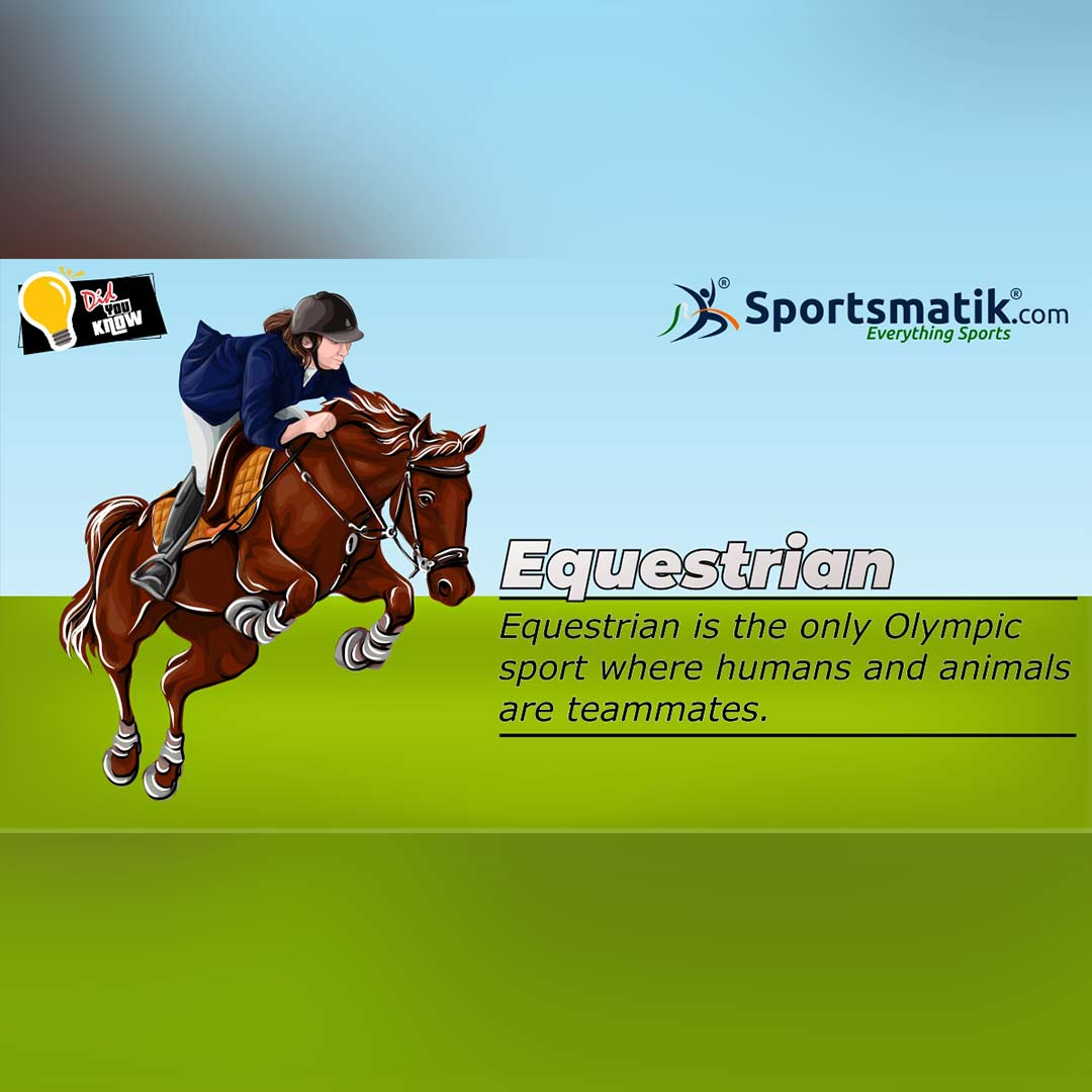 equestrian facts