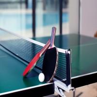 Racquet / Paddle / Bat