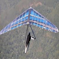 Hang glider wing
