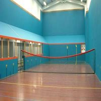 Real Tennis - Net