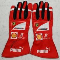 Formula One (F1) - Gloves