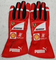 Indycar Racing - Gloves