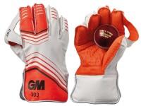 Wicket Keeper Gloves