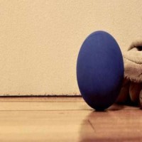 American Handball - Ball