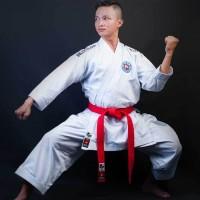 Karate-gi