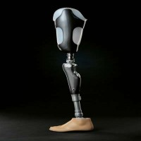 Para-Badminton - Prosthetic limbs