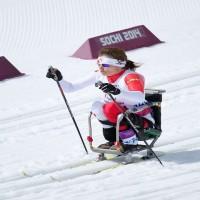 Sit-ski Poles