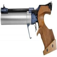 Pistol Shooting - Pistol