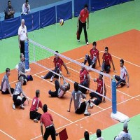 Sitting Volleyball - Net