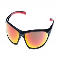 Sunglasses/Goggles