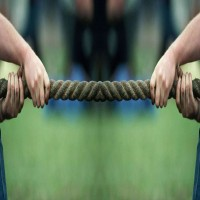 Tug Of War - Rope
