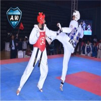 Aryans World Taekwondo Academy Academy