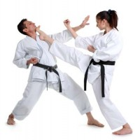 Martial Arts Training Association Academy