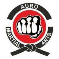 Auro Martial Arts Academy Academy