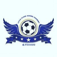 Hyderabad little stars soccer academy Academy
