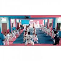 Taekwondo Martial Arts Academy Academy