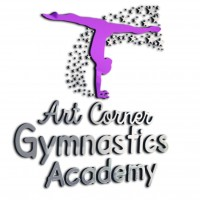 Art Corner Gymnastics Academy Academy