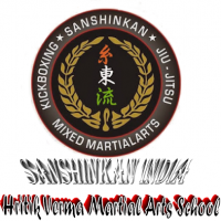 Sanshinkan martial arts brahampuri Academy