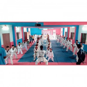 Taekwondo Martial Arts Academy