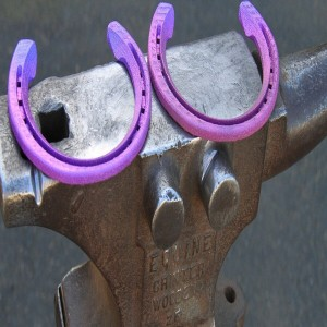 3-D Printed Horseshoes