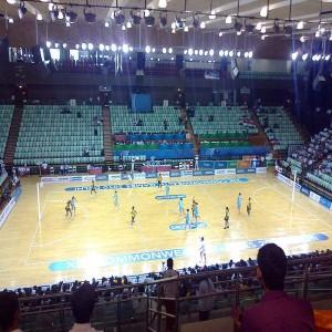 Thyagaraj Sport Complex