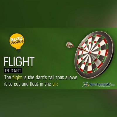 flight in dart
