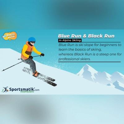 alpine skiing facts