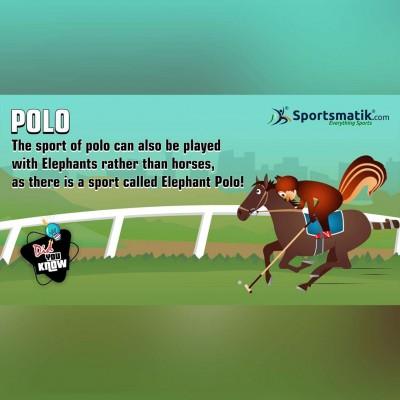 Polo fun fact