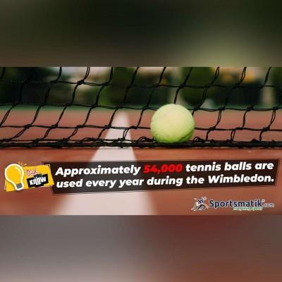tennis interesting facts